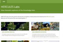 Knowledge Hub Labs